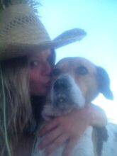 Canadian chick and her dog desperately looking for a room Byron Bay Byron Area Preview