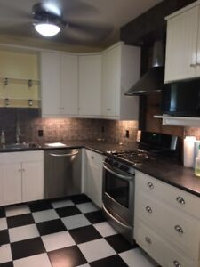Luxurious 4 + Den with AC & Laundry minutes to Downtown Hamilton