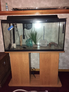 Fish Aquarium - 35 Gallon with Stand and Accessories
