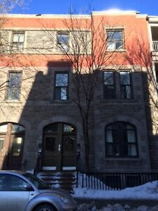 McGill Ghetto - 3 Bedroom Apartment - Fantastic