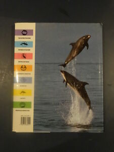 The Greenpeace Book of Dolphins Kitchener / Waterloo Kitchener Area image 2