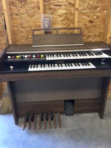 Cord organ