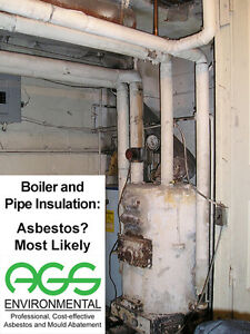 AGS Environmental Professional, Cost-Effective Asbestos Removal Kitchener / Waterloo Kitchener Area image 3