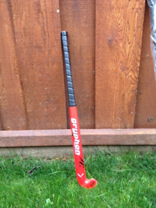 Field hockey sticks (kids)