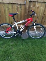 Kids / Teen Small Mountain Bike
