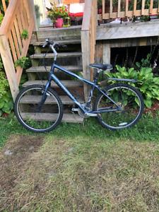 TREK Navigator 100 bike