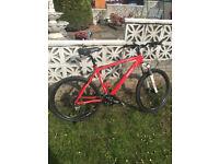 Saracen mountain bike mens