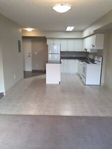 SPACIOUS SUITES IN WATERLOO! READY NOW! Kitchener / Waterloo Kitchener Area image 12