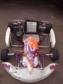 Tony Kart with Rotax Senior 125cc GFM racing engine