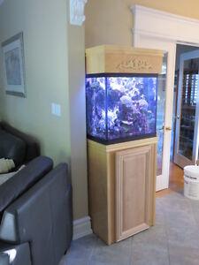 35 Gallon Marine Aquarium - (Salt Water Tank)