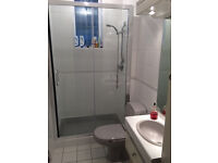 Sliding glass shower door Selles toilet and inset Basin
