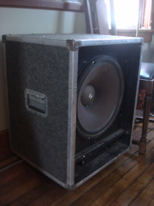 "15"" Doyle bass cabinet with EV speaker"