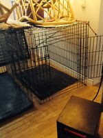 giant breed dog crates