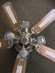Large 3 Speed Reversible Ceiling Fan and Lights