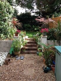 Beautiful sunny 1 double Bedroom Garden property-water included, on one of Hove loveliest streets