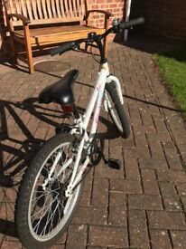 Great cheap little bike requires new young enthusiastic female rider