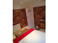 GORGEOUS DOUBLE RM, MON-FRI ONLY, suit professional ,close to bus/M5, GL4 1 mile from city centre,