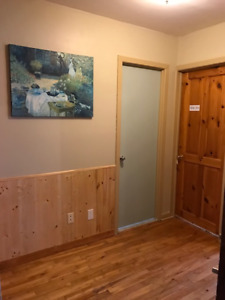 Large furnished 4 1/2 in Montreal