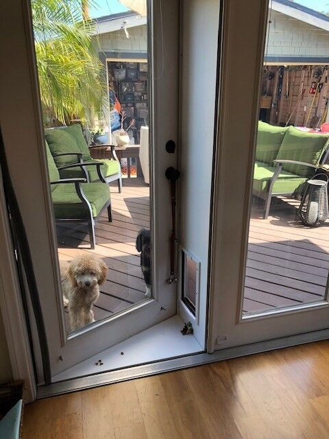 Pet Door for French Doors In or out Pet Products Extra Large