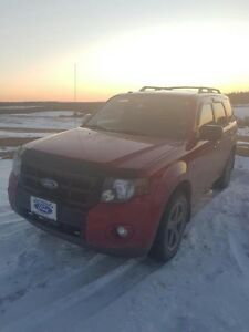 OWNER-2010 Ford Escape XLT SUV, Crossover