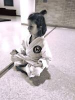 Youth & Family KARATE Classes!