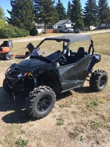 Wildcat 700 Limited for sale....with many extras