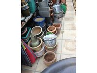 Plant pots for the garden
