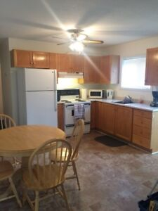 Fully Furnished Apartment in Gander