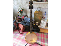 Ozark 2143 OG 'Gold Laydie' Professional Open Back Banjo
