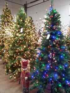 50% OFF Christmas Trees 5', 6', 7.5' & 9'