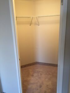 SPACIOUS SUITES IN WATERLOO! READY NOW! Kitchener / Waterloo Kitchener Area image 6