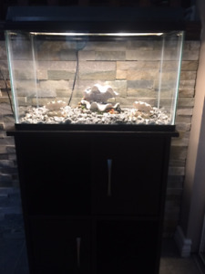 3 MONTH NEW 10 GAL. TANK & WOODEN STAND PLUS ALL ACCESSORIES""
