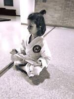 Youth and Family Karate Program!