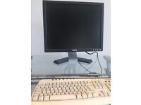 Monitor (DELL)