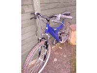 Blue 24 inch Muntis Mountain Bike(Shimano Breaks)