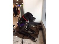 Mobility Assistance Dog