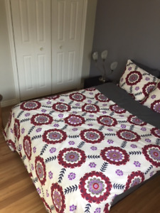 Large room in Lower Sackville Month to Month no damage deposit