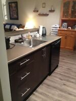 Big Beautiful Newly Renovated 2 Bedroom Apartment for Sublet