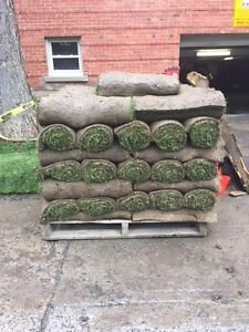 OVERSTOCK**Paletes of Sod**