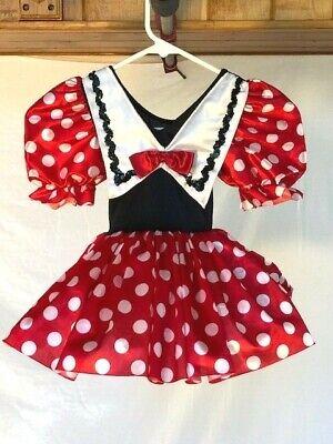 Mini Mouse Costume (