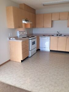 South Sunny View! 2 Bedroom Spacious Apartment