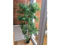 Artificial Bamboo Plant - 1.4m (55in) tall