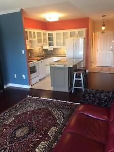 Funky & Furnished 1150sf 2 bed 2 bath 7th floor downtown Guelph