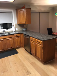 KITCHEN CUPBOARDS, CABINETS & GRANITE COUNTER TOP