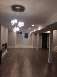 Newly Constructed, Bright Walk-Up Basement in Newmarket