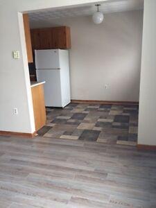 930+Sqft ADULT - 2 Bedroom Northside - Pets OK