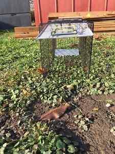 Live animal trap London Ontario image 2