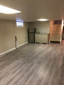 NEWLY RENOVATED BASEMENT APARTMENT FOR RENT IN WELLAND