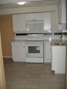 TWO BEDROOMS BASEMENT IN SKYVIEWN.E AVAIL FOR RENT MAY 1ST