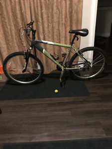 Norco Pinnacle Mountain Bike